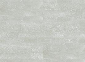 DWV18204