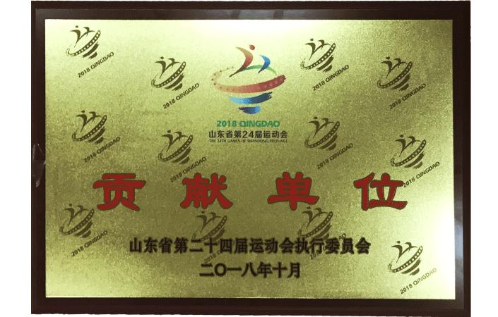 山东省运动会贡献单位